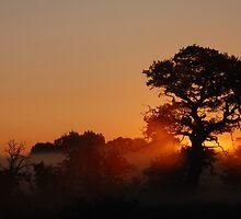 Dawns Silhouette by Simon Pattinson