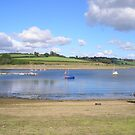 Wimbleball Lake, Somerset,Devon,UK pic 5 by janet davies