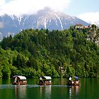 Three Little Gondolas ... Lake Bled by Danielle Chappell-Hall