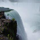 Horseshoe Falls by Wheelssky