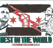 CM Punk WWE by chrisjh2210