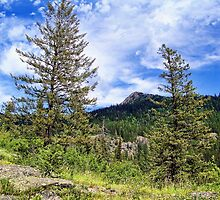 Hall Peak (Bob Marshall Wilderness, Montana, USA) by rocamiadesign