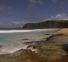 Cape Spencer Beach in Moonlight by pablosvista2