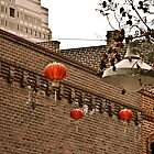 Chinese Lanterns by Tim Scott
