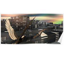 Native Sea Eagles Poster
