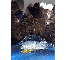 Manwes Eagle Dunk Photographic Print