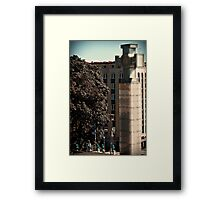 Vabadussammas Framed Print