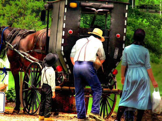 Amish Family by Marcia Rubin