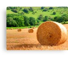 Harvest - West Sussex Canvas Print