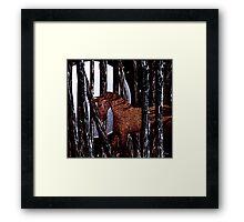 Eidolon Forrest Framed Print