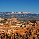 Colors of the Rainbow #2 - Bryce Canyon, Utah USA by Vicki Pelham