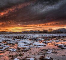 Snow Glow by Bob Larson