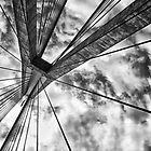 Anzac bridge by Adriano Carrideo