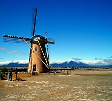 The Lily Dutch Windmill - Borden, WA by Akrotiri