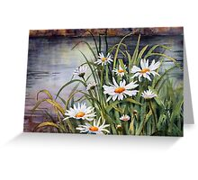 Daisies on the river bank Greeting Card