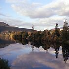 Autumn, River Derwent, Tasmania by Brett Rogers