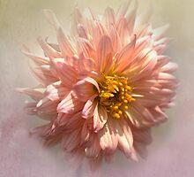 inner glow by Teresa Pople