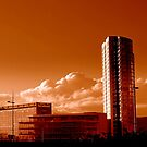 Obel Tower from Queen's Bridge, Belfast by Chris Millar