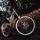 Downhill bike portrait by Maxim Mayorov