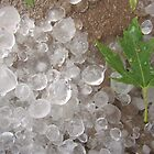 Summer Hail 2 by Keeawe