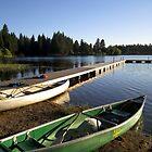 McCumber Lake by SecondNature