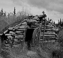 Gold Rush Cabin (Yukon) by Juergen Weiss
