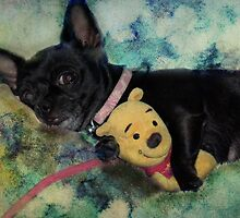 It's My Pooh Bear by Rhonda Strickland