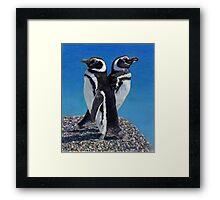 I'm Not Talking To You!  Penguins Framed Print