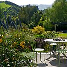 Garden, French Farm, Banks Peninsula, New Zealand. by johnrf