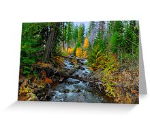 Jack Creek ~ Central Oregon ~ Greeting Card