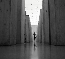 Bregenz1 by RobertScholz