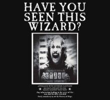 Have You Seen Sirius? by Rachel Miller