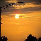 Summer Sundown by Farah  Rose