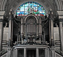 Willis Organ in St.George's Hall by AndrewBerry