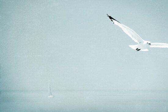 Serenity by vividpeach