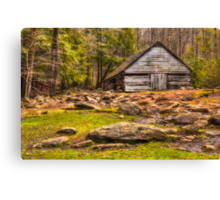 Ogle barn near Roaring Fork Canvas Print