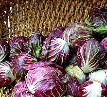 Cabbage Patch by Fraida Gutovich
