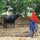 Rural Life by Bobby Dar