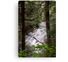 Denny Creek, Washington Canvas Print