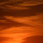 Burndt Sunset by Mully410