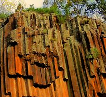 Sawn Rock Mt Kaputar Ranges, Narabri NSW by Virginia  McGowan