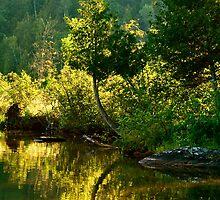 Lac Sainte Marie I by Valerie Rosen