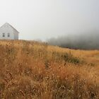 August mist building field by TerrillWelch