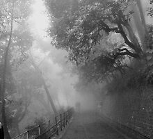 Journey to eternity. by SUJAN CHATTERJEE