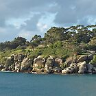 South Head by Camp Cove by Nick Wilsher