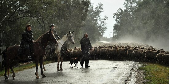 Welcome Rain - Tocumwal NSW by AnnetteStillard