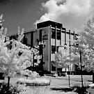City Hall McMinnville Tennessee by © Joe  Beasley IPA