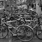 Bicycle Park by TeresaMiddleton