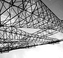 Roller Coaster Life by daughertym1