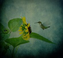 Hummingbird and Sunflower by Sandy Keeton